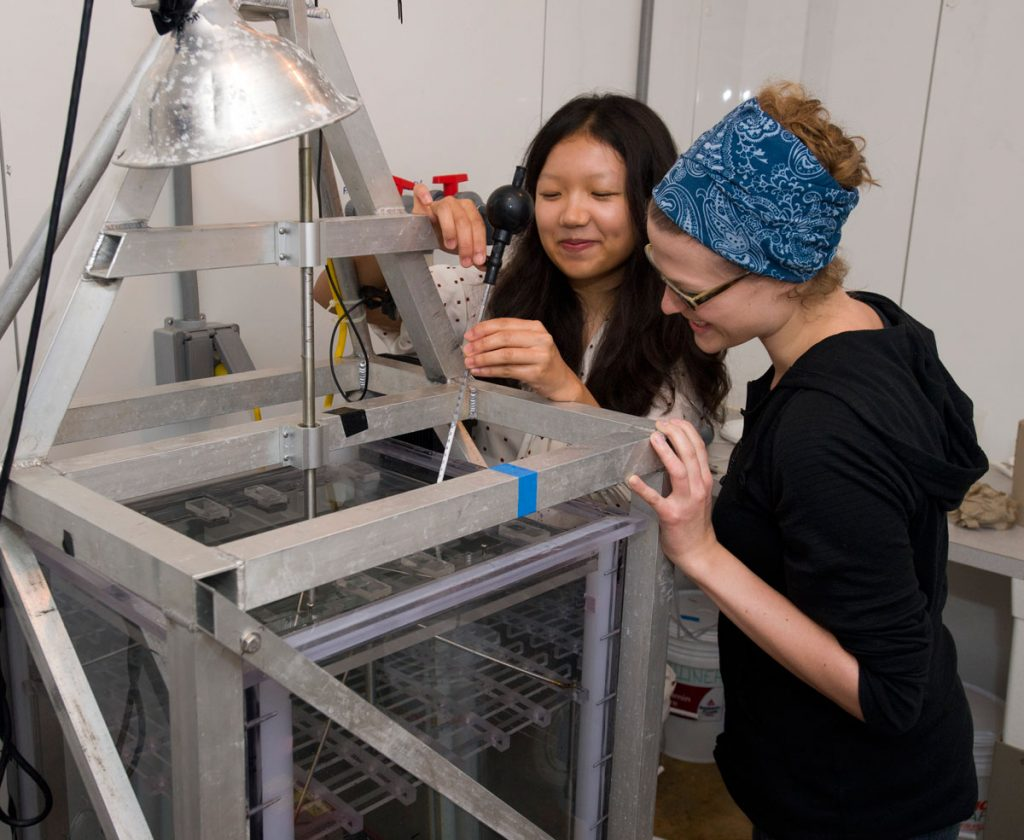 Jeanette Wheeler (right) and WHOI Summer Student Fellow Elaine Luo used a turbulence tank to study the swimming behavior of oyster larvae. Photo by Tom Kleindinst, WHOI