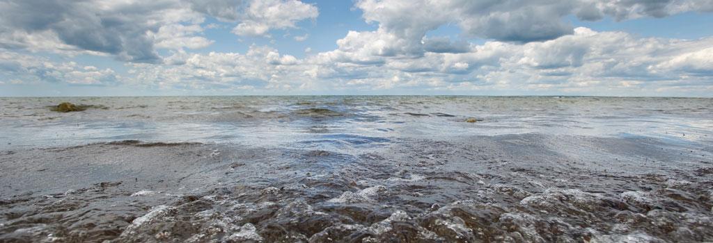 water-quality-landingnew