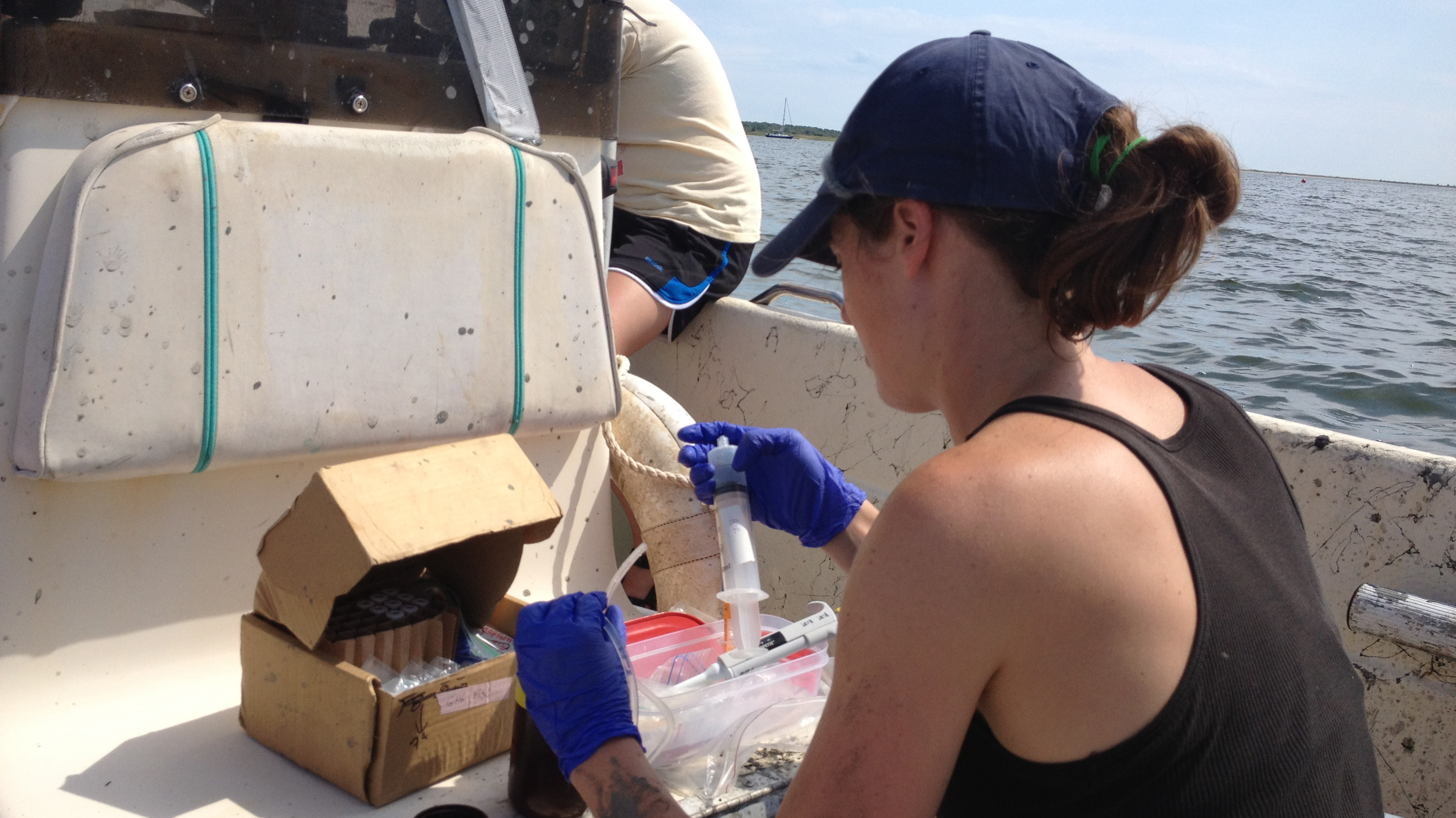 Sarah Foster preparing Waquoit Bay water samples to analyze for concentrations of methane and nitrous oxide. Photo credit: Silvia Newell