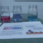 Displaying the pH of vinegar, fresh water and sea water