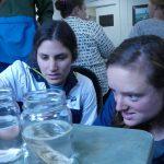 Examining shells disintegrating in acidic substance (vinegar)
